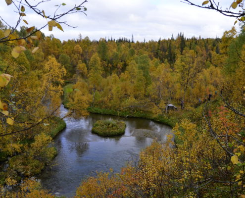 Autumn in Bjurälven
